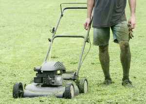 lawn mower and gardener